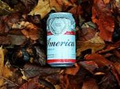 litter america (2)