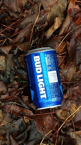 litter bud light (2)