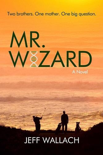Mr_Wizard