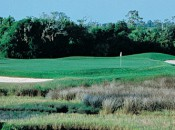 Charleston National CC