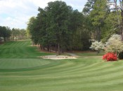 Mid-Pines and Pine Needles are a Dream Come True!