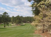 Mid Pines Golf Club puts players in the dogwoods and pines for a classic, period feel similar to Augusta National Golf Club.