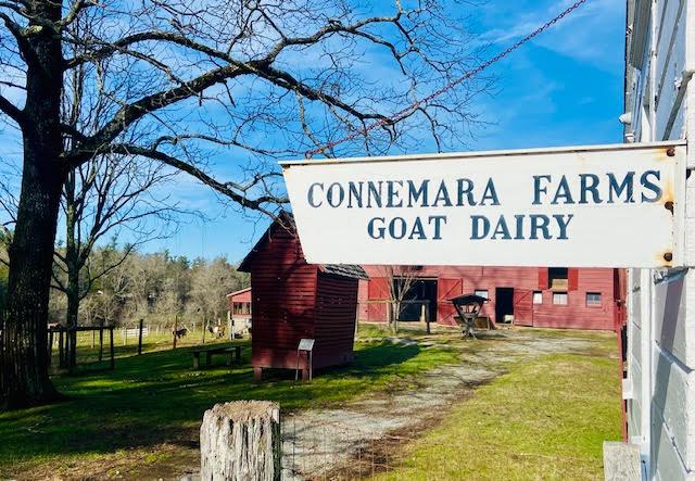 Connemara Goat Farm
