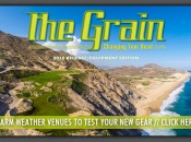 the-grain-cover
