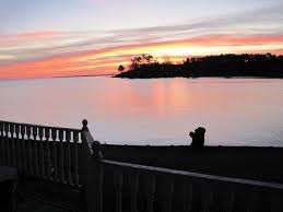 Travelers along I-95 have driven over Santee SC's beautiful bodies of water, including Lake Marion, and often stop for the area's fine golf.