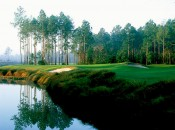 The voluptuous Slammer & Squire course makes the most of a very ordinary Florida site.
