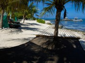 Get a beautiful view of the Cayman Islands at Compass Point