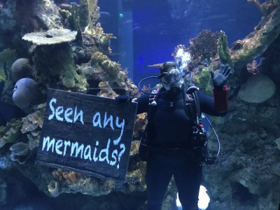 Visitors should keep their eyes open, and all their senses, for immersive surprises at Wonders of Wildlife