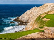 Quivira No. 6 from bsack tee