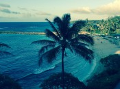 Picture From Our Room With a Cool Filter